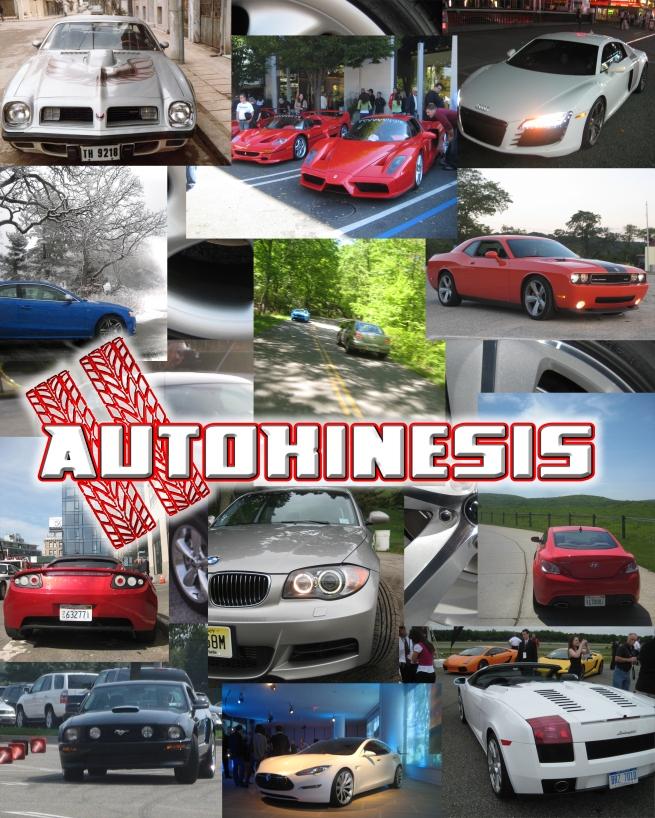 autokinesis collage copy